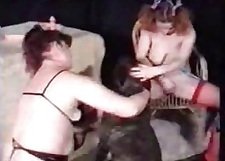 Busty bitches having all sorts of fun with their insane hound