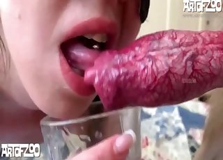 Pigtailed brunette is sucking a pretty nice pink penis